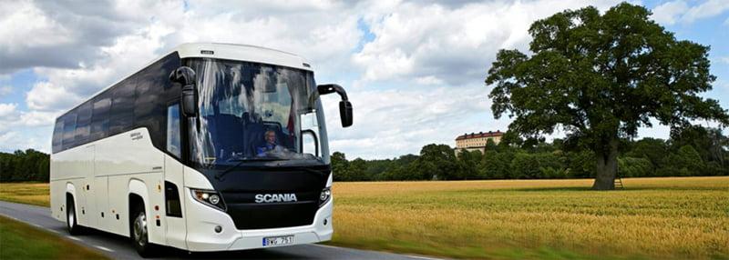 Пассажирские перевозки на всех видах пассажирского транспорта по странам СНГ.